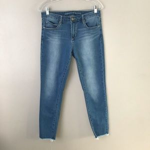 Articles of Society Sarah distress skinny jeans